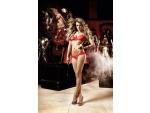 Красный полупрозрачный комплект-бикини из бюста и трусиков Deeper in Hell #15321