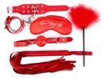 Набор красных БДСМ-аксессуаров из 5 предметов #119031