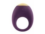 Фиолетовое эрекционное кольцо Eclipse Vibrating Cock Ring