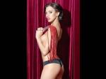 Красная кожаная плеть #27341