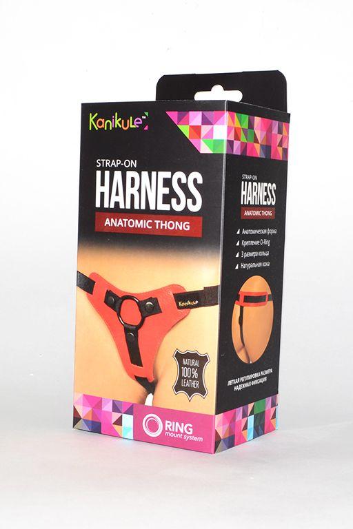 Красно-чёрные трусики для фиксации насадок кольцом Kanikule Leather Strap-on Harness  Anatomic Thong